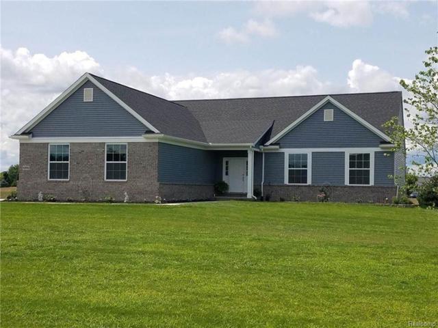 4775 Emerald Valley Loop, Handy Twp, MI 48836 (#219022574) :: The Buckley Jolley Real Estate Team