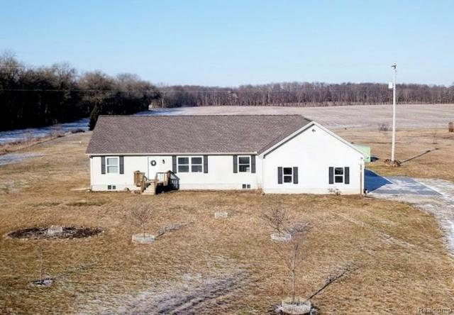 12454 Roepke Road, Lyndon Twp, MI 48137 (#219022987) :: The Buckley Jolley Real Estate Team