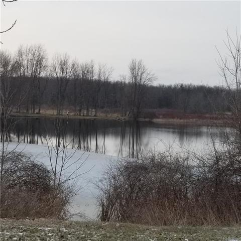 9076 Pineview Lake Court, Argentine Twp, MI 48451 (#219023175) :: The Buckley Jolley Real Estate Team