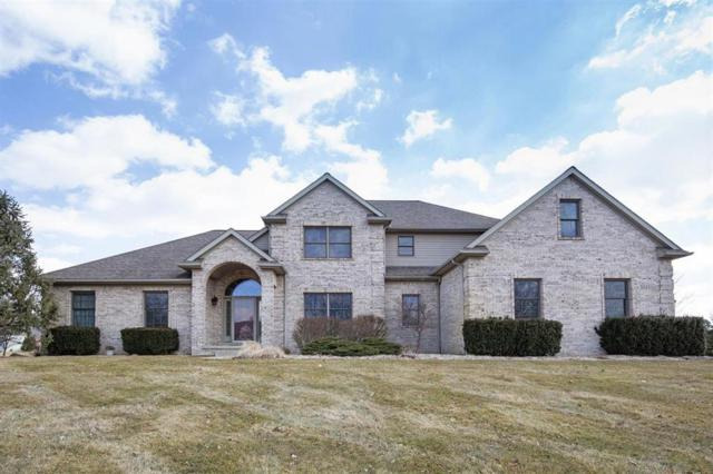 5725 Catherine Court, Lodi, MI 48176 (#543263707) :: The Buckley Jolley Real Estate Team