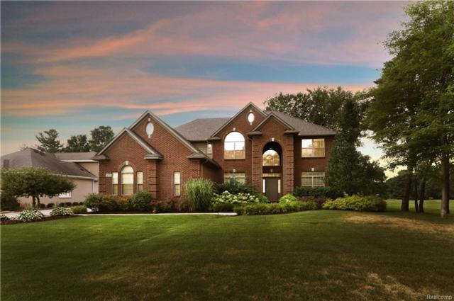 4876 Crooked Stick Court Court, Genoa Twp, MI 48116 (#219023455) :: The Buckley Jolley Real Estate Team