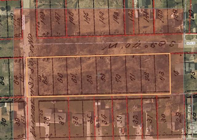 VL Scott Street, Marine City, MI 48039 (#219023634) :: The Alex Nugent Team   Real Estate One