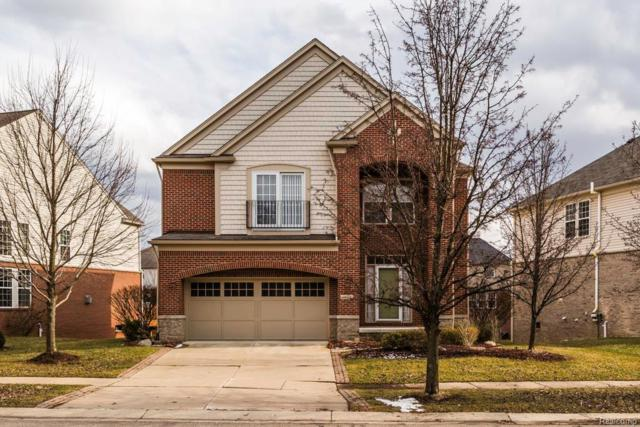 44919 Paine Drive, Novi, MI 48377 (#219023654) :: The Alex Nugent Team | Real Estate One
