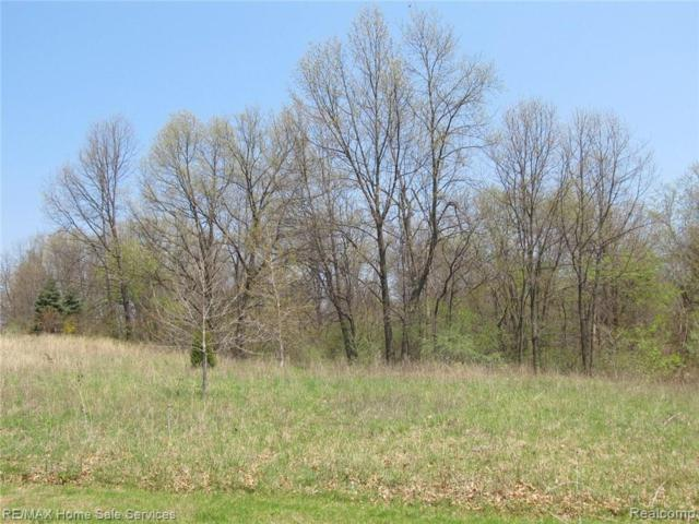 Lot 24 Forest Valley Drive, Independence Twp, MI 48348 (#219023888) :: RE/MAX Classic