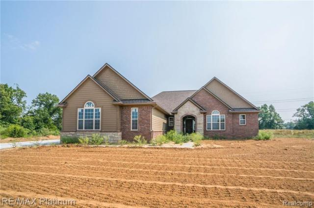 3482 Outback Trail, Putnam Twp, MI 48169 (#219023965) :: The Buckley Jolley Real Estate Team