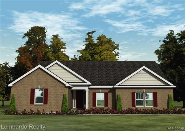61908 Shetland Drive, Lyon Twp, MI 48178 (#219024100) :: The Buckley Jolley Real Estate Team