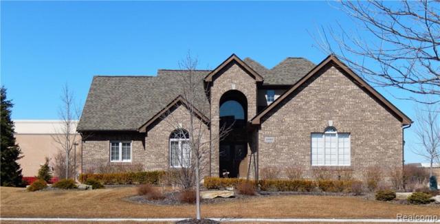 52002 Copperwood Dr North, South Lyon, MI 48178 (#219024968) :: Duneske Real Estate Advisors