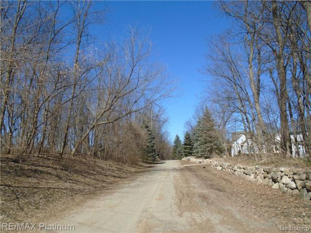 V/L Callan Farm Lane Parcel 3, Milford Twp, MI 48380 (#219025536) :: RE/MAX Classic