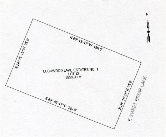 798 E Sweet Briar Lane, Monroe Twp, MI 48161 (MLS #57031374548) :: The Toth Team