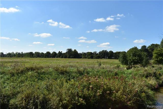 PARCEL G Roods Lake Road, Mayfield Twp, MI 48446 (#219027650) :: The Buckley Jolley Real Estate Team