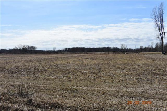 PARCEL D Daley Road, Mayfield Twp, MI 48446 (#219027788) :: The Buckley Jolley Real Estate Team