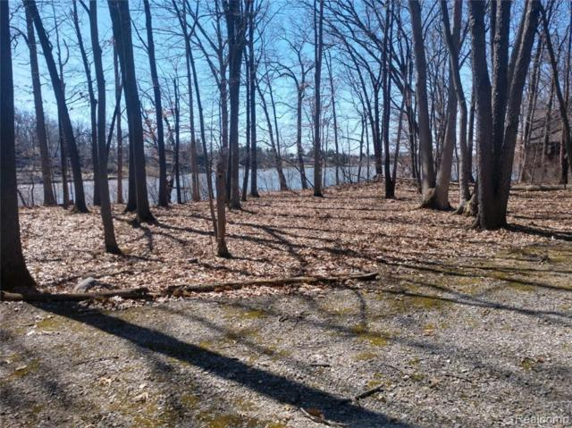 00 Island Point Drive, Elba Twp, MI 48455 (MLS #219028989) :: The Toth Team