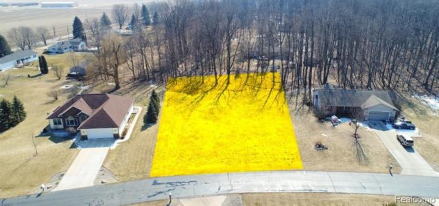 3051 Hillview Drive, MADISON TWP, MI 49247 (MLS #219030406) :: The Toth Team