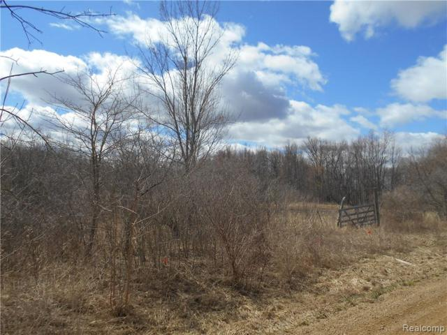 0000 Mount View Road, Mayfield Twp, MI 48446 (#219031572) :: The Buckley Jolley Real Estate Team