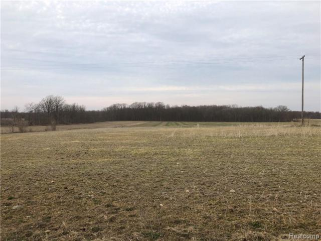 LOT B Goodall Road, Vernon Twp, MI 48429 (#219032623) :: RE/MAX Classic
