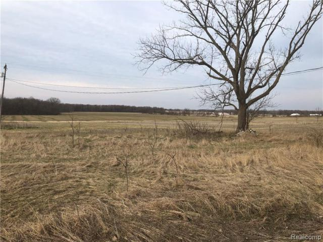LOT D Goodall Road, Vernon Twp, MI 48429 (#219032630) :: RE/MAX Classic