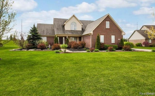 8724 Maria Court, Hartland Twp, MI 48855 (#219033164) :: The Mulvihill Group
