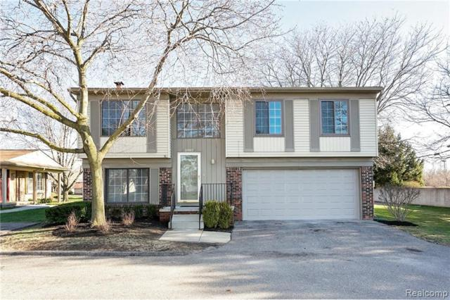 2987 Roundtree Drive, Troy, MI 48083 (#219033219) :: The Buckley Jolley Real Estate Team