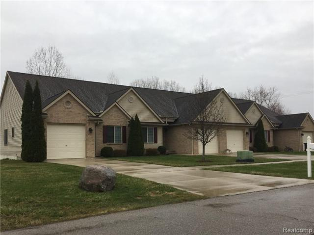 201 Jonathon, Almont Vlg, MI 48003 (#219033508) :: Alan Brown Group