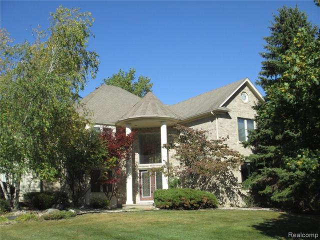 1901 Westridge Drive, Rochester Hills, MI 48306 (#219033825) :: RE/MAX Classic