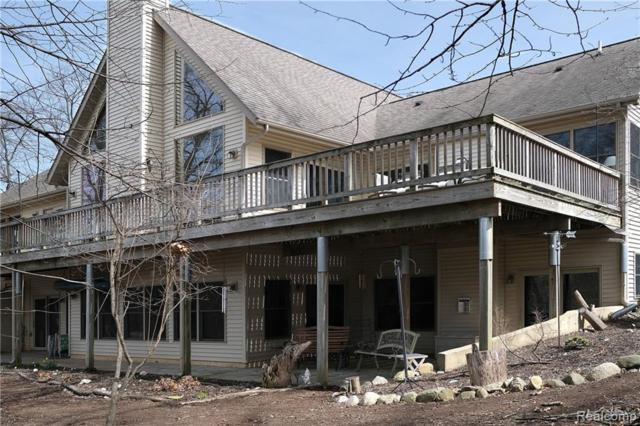 7717 Huron River Drive, Webster Twp, MI 48130 (MLS #219034772) :: The Toth Team