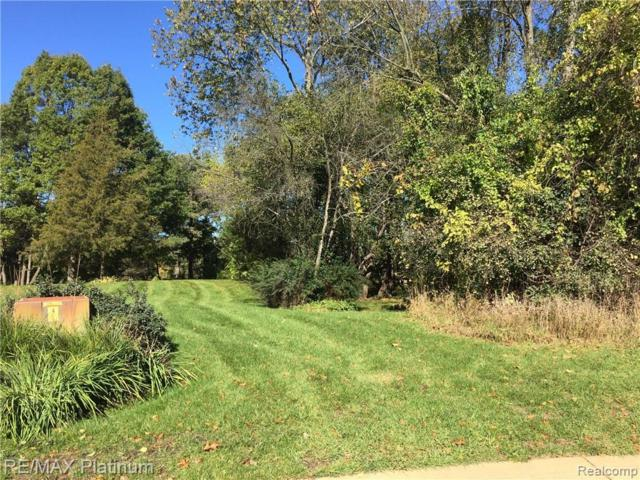 V/L Hill Hollow Court, Milford Twp, MI 48381 (#219035261) :: The Mulvihill Group