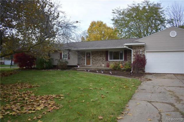 6514 Luanne Drive, Mt Morris Twp, MI 48433 (#219035446) :: RE/MAX Nexus