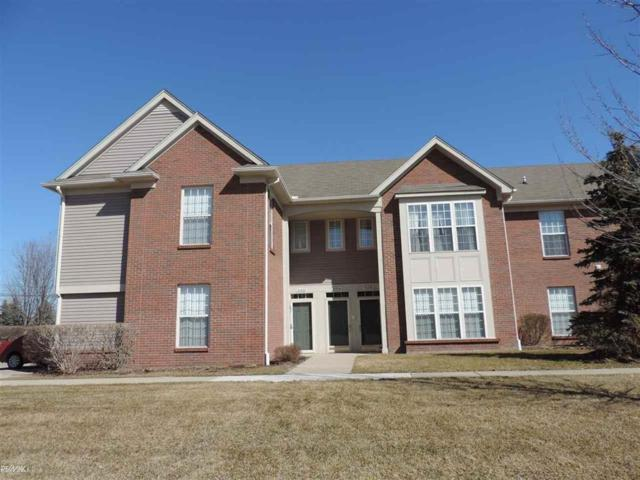 51834 Lionel Lane, Chesterfield Twp, MI 48051 (#58031377163) :: KNE Realty 360
