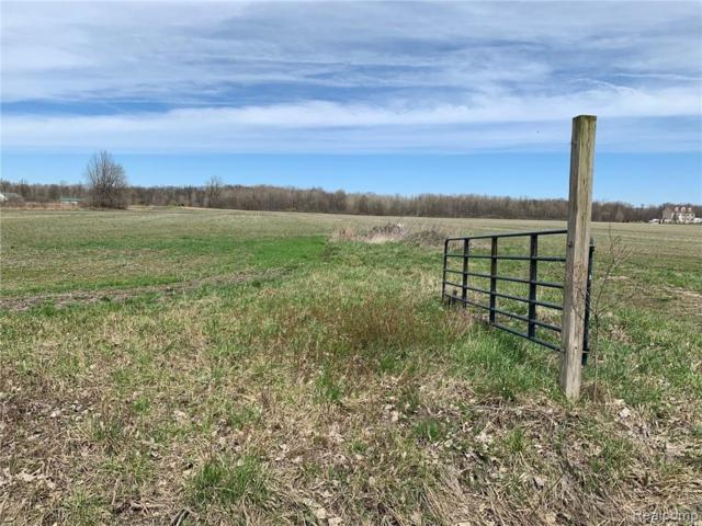 000 Stout Road, Exeter Twp, MI 48117 (#219036392) :: RE/MAX Classic