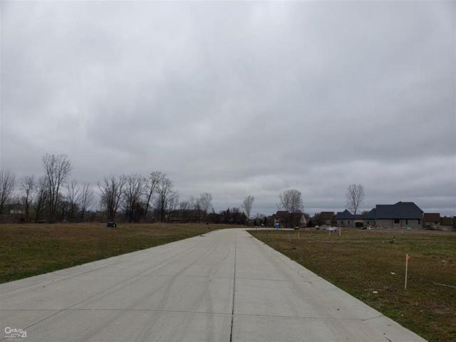 6728 Roseberry Dr (Unit # 3), Shelby Twp, MI 48316 (#58031377366) :: The Mulvihill Group