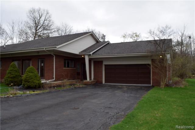 251 Habrand Drive, Troy, MI 48098 (#219036854) :: The Buckley Jolley Real Estate Team
