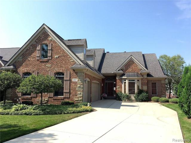 10817 Cliffview Drive, Green Oak Twp, MI 48178 (#219037355) :: The Buckley Jolley Real Estate Team