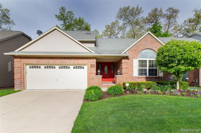 4580 Spring Mountain Drive, Brighton, MI 48116 (#219038451) :: The Buckley Jolley Real Estate Team