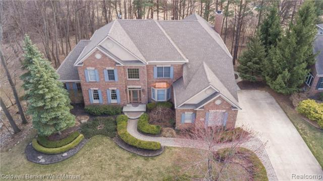 45541 Tournament Drive, Northville Twp, MI 48168 (#219038481) :: RE/MAX Classic