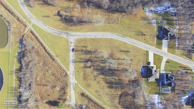 Blackheath Rd., ST. CLAIR TWP, MI 48079 (#58031378117) :: The Mulvihill Group