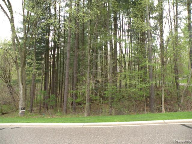 Lot 33 Alta Vista Drive, Hamburg Twp, MI 48169 (MLS #219039935) :: The Toth Team