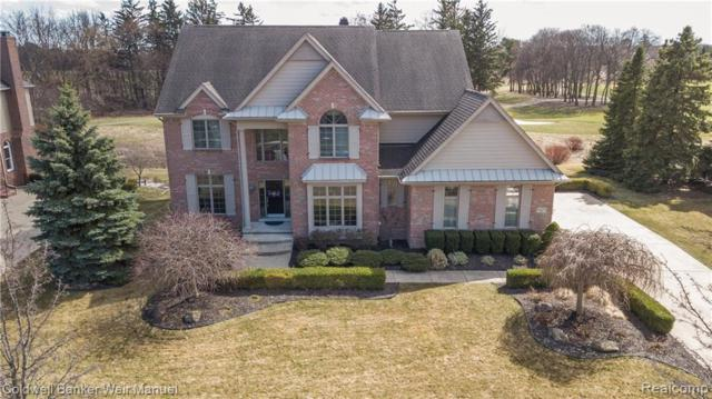 45625 Tournament Drive, Northville Twp, MI 48168 (#219040156) :: RE/MAX Classic