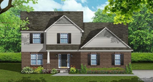 59362 Deer Haven Drive, Lyon Twp, MI 48178 (#219040361) :: The Buckley Jolley Real Estate Team