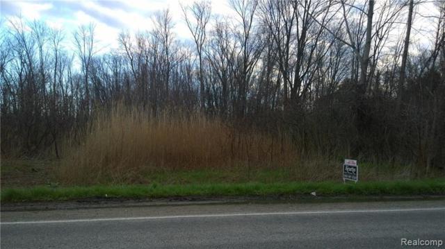 TBD Metcalf Road, Burtchville Twp, MI 48059 (#219040556) :: The Buckley Jolley Real Estate Team