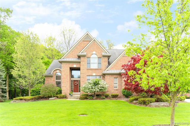 44062 Cypress Point Drive, Northville Twp, MI 48168 (#219041154) :: Duneske Real Estate Advisors