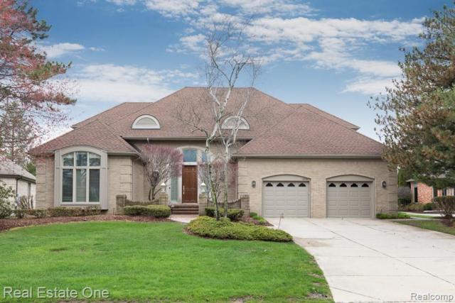 3436 Summit Ridge Drive, Rochester Hills, MI 48306 (#219041171) :: The Buckley Jolley Real Estate Team
