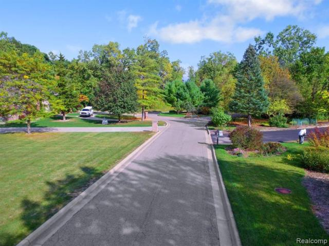 PARCEL A Lilac Lane, Southfield, MI 48033 (#219041219) :: The Alex Nugent Team | Real Estate One