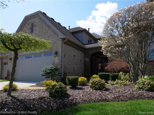10782 Sparkling Waters Court #6, Green Oak Twp, MI 48178 (#219042793) :: The Mulvihill Group