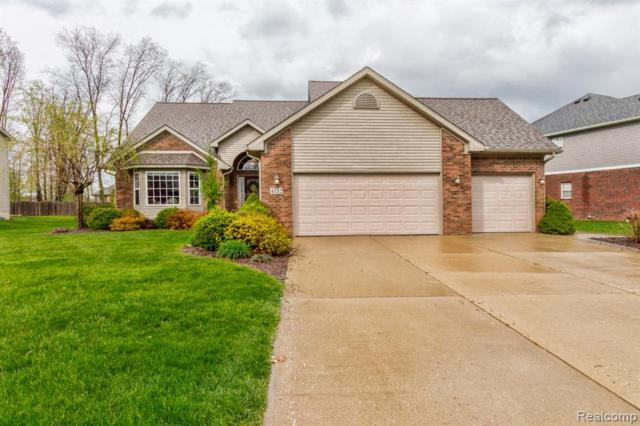 4732 Southpointe Parkway, Monroe Twp, MI 48161 (MLS #219042974) :: The Toth Team