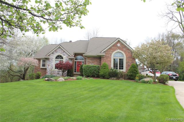 22760 Indianwood Drive, Lyon Twp, MI 48178 (#219043311) :: The Buckley Jolley Real Estate Team
