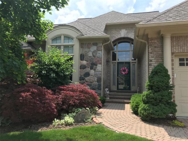 9419 High Pointe Court, Plymouth Twp, MI 48170 (#219043328) :: The Buckley Jolley Real Estate Team