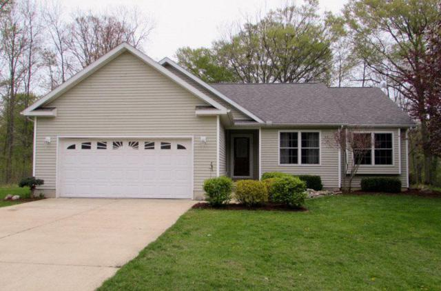 10337 Thornapple Drive, Fulton Twp, MI 48871 (#5031379748) :: RE/MAX Nexus