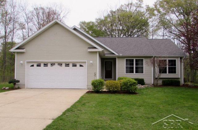 10337 Thornapple Drive, Fulton Twp, MI 48871 (#61031379760) :: RE/MAX Nexus