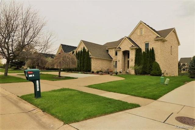12030 Chandler Drive, Plymouth Twp, MI 48170 (#219044295) :: Duneske Real Estate Advisors