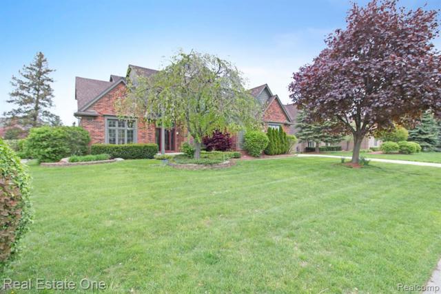 1614 Lexington Drive, Troy, MI 48084 (#219044628) :: The Alex Nugent Team | Real Estate One